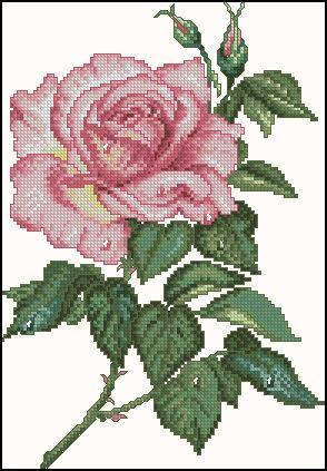 вышивка крестом схемы розы